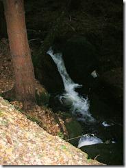 Dürre Biela